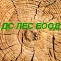 Горско стопанство, Залесяване, Дърводобив - ДС ЛЕС ЕООД