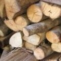 Горско стопанство Константин лес - Клисура ЕООД