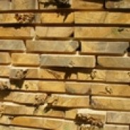 Иглолистен дървен материал Алекс 200