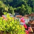 Къщи за гости в Бачково - къща Слънчев ден