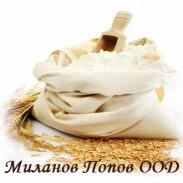 Миланов Попов ООД
