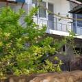 Нощувки в Балчик - Къща за гости Марияна