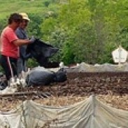 Производство на екологичен биотор ППОК Изгрев 93