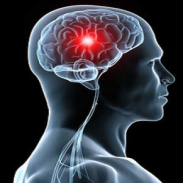 Специалист невролог в Ловеч-доктор Нелия Йорданова