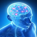 Специалист нервни болести в Разград - д-р Ганка Дескова