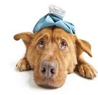 Клинични случаи